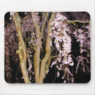 Pink Weeping Willow In The Night On A Spring Night Mouse Pad