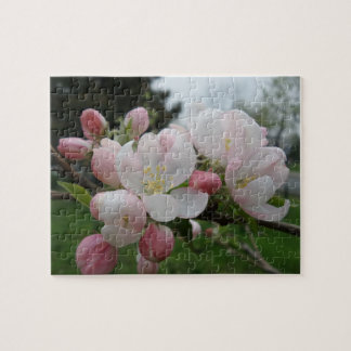 Pink White Flower Jigsaw Puzzle