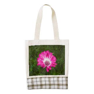 Pink & White Gerbera Daisy in Bloom
