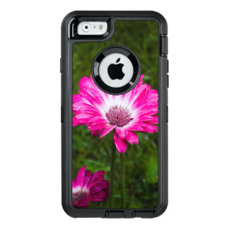 Pink & White Gerbera Daisy in Bloom OtterBox iPhone 6/6s Case