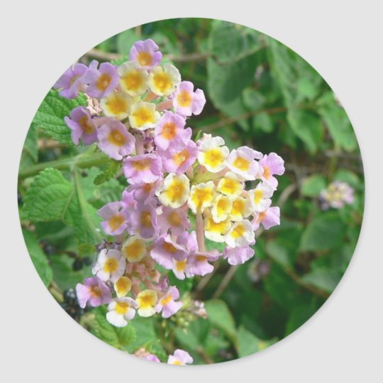 Pink Yellow And White Flowers Classic Round Sticker
