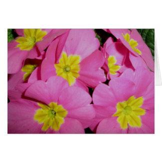 Pink Yellow Primrose Note Card