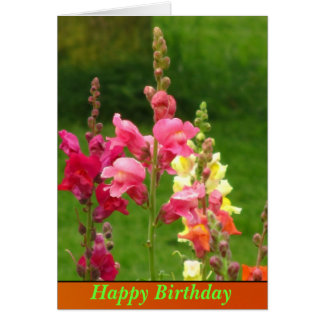 Pink Yellow Snapdragon Flower Happy Birthday Card