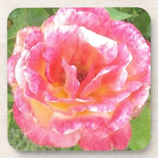 Pink & Yellow Spotted Rose Coaster