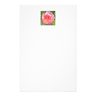 Pink & Yellow Spotted Rose Stationery