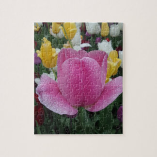 Pink Yellow Tulips Jigsaw Puzzle