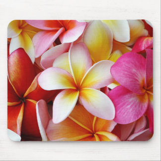 Pink Yellow  White Mixed Plumeria Flower Mouse Pad