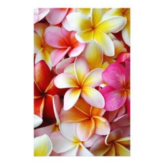 Pink Yellow  White Mixed Plumeria Flower Personalized Stationery