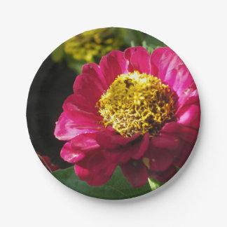 Pink Zinnia 7 Inch Paper Plate