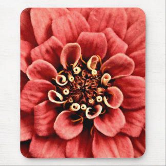 pink zinnia detail is cheery but not too bright mouse pad
