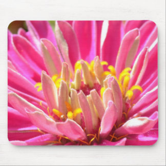 Pink Zinnia Flower Macro Mousepad