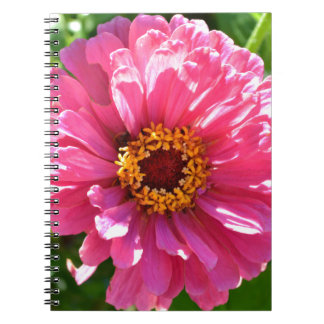 Pink Zinnia Notebook