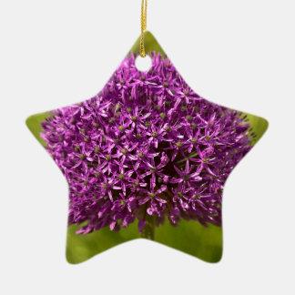 Pinkfarbener ALIUM Ceramic Ornament
