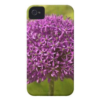 Pinkfarbener ALIUM iPhone 4 Case