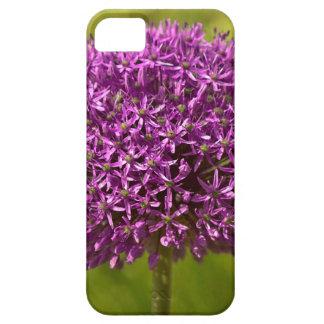 Pinkfarbener ALIUM iPhone 5 Case