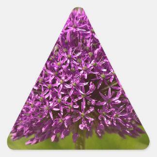 Pinkfarbener ALIUM Triangle Sticker