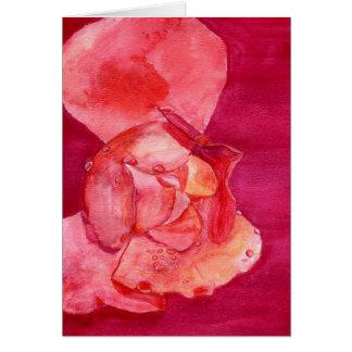pinkrose card
