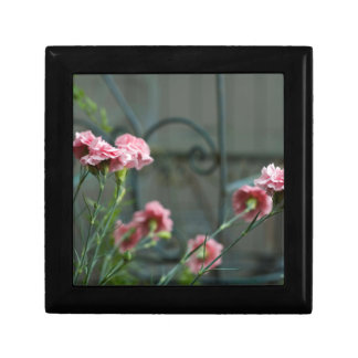 Pinks growing in a Cotswold Garden Keepsake Box