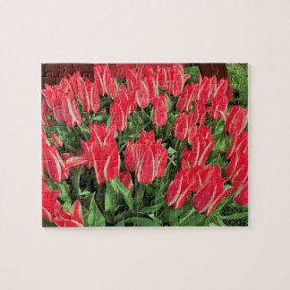 Pinocchio Tulips Jigsaw Puzzle