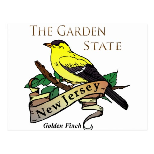 Pinson d'or de garden state de New Jersey Carte Postale