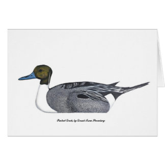 Pintail Duck Greeting Card, by David Ivan Strombeg Card