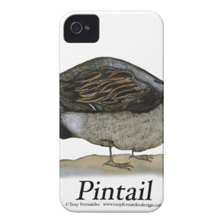 Pintail duck, tony fernandes iPhone 4 Case-Mate cases