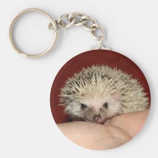Pinto face hedgehog keychain