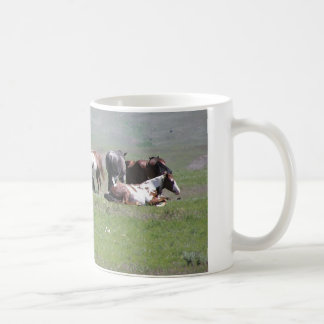 Pinto Herd, South Dakota Coffee Mug