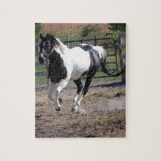 Pinto Paint Horse Jigsaw Puzzle