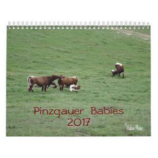 Pinzgauer Babies 2017 Calendar-customize year Calendars