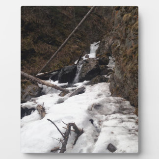 Pioneer Falls Butte Alaska Plaque
