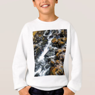Pioneer Falls Butte Alaska Sweatshirt