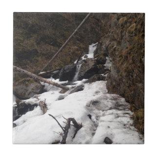 Pioneer Falls Butte Alaska Tile