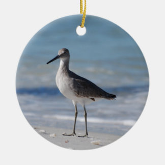 Piping Plover Ornament