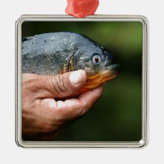 Piranha Amazon Peru Metal Ornament