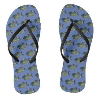 Piranha Frenzy Flip Flops (Blue)