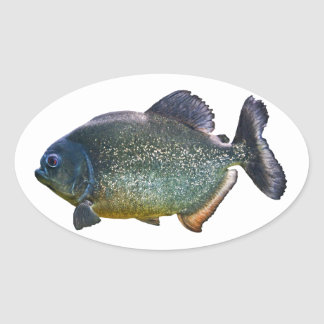 Piranha Sticker