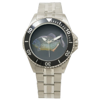 Piranha Watch