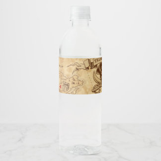 Pirate Old Vintage Treasure Map Birthday Party Water Bottle Label