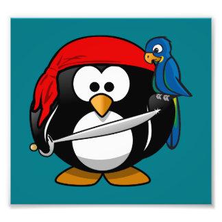 Pirate penguin parrot photo print