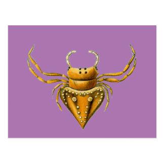 Pirate spiders postcard