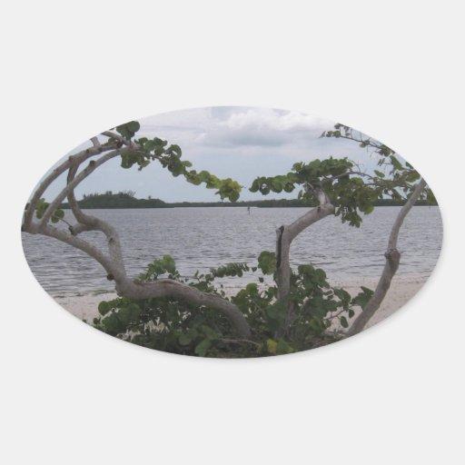 Pirate's Beach #7 Oval Stickers