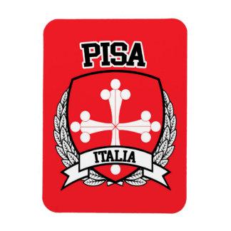 Pisa Magnet
