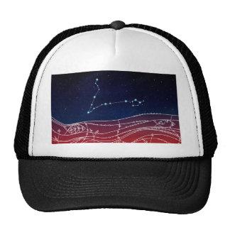 Pisces Constellation Design Trucker Hat