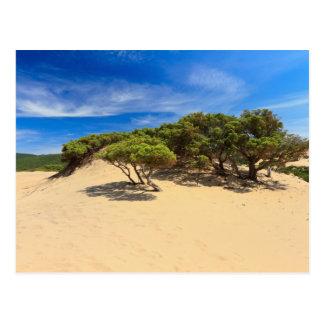 Piscinas dune - Sardinia, Italy Postcard