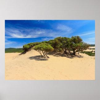 Piscinas dune - Sardinia, Italy Poster