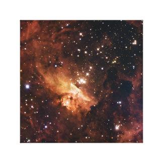 Pismis 24 brown stars NASA Canvas Print