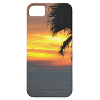 Pismo Beach iPhone 5 Cover