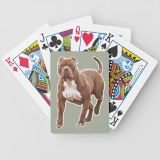 Pit bull brown bicycle playing cards