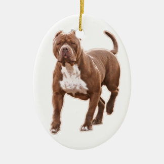 Pit bull brown ceramic oval ornament
